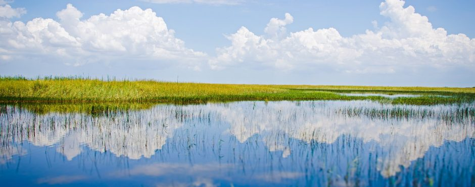 Sunny Everglades - Fort Lauderdale Airboat Rides - Ft. Lauderdale Airboat Rides
