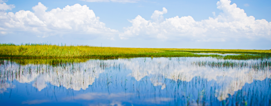 Everglades National Park is the third-largest National Park in the United States.