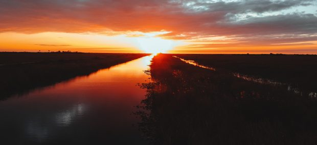 Everglades At Sunset