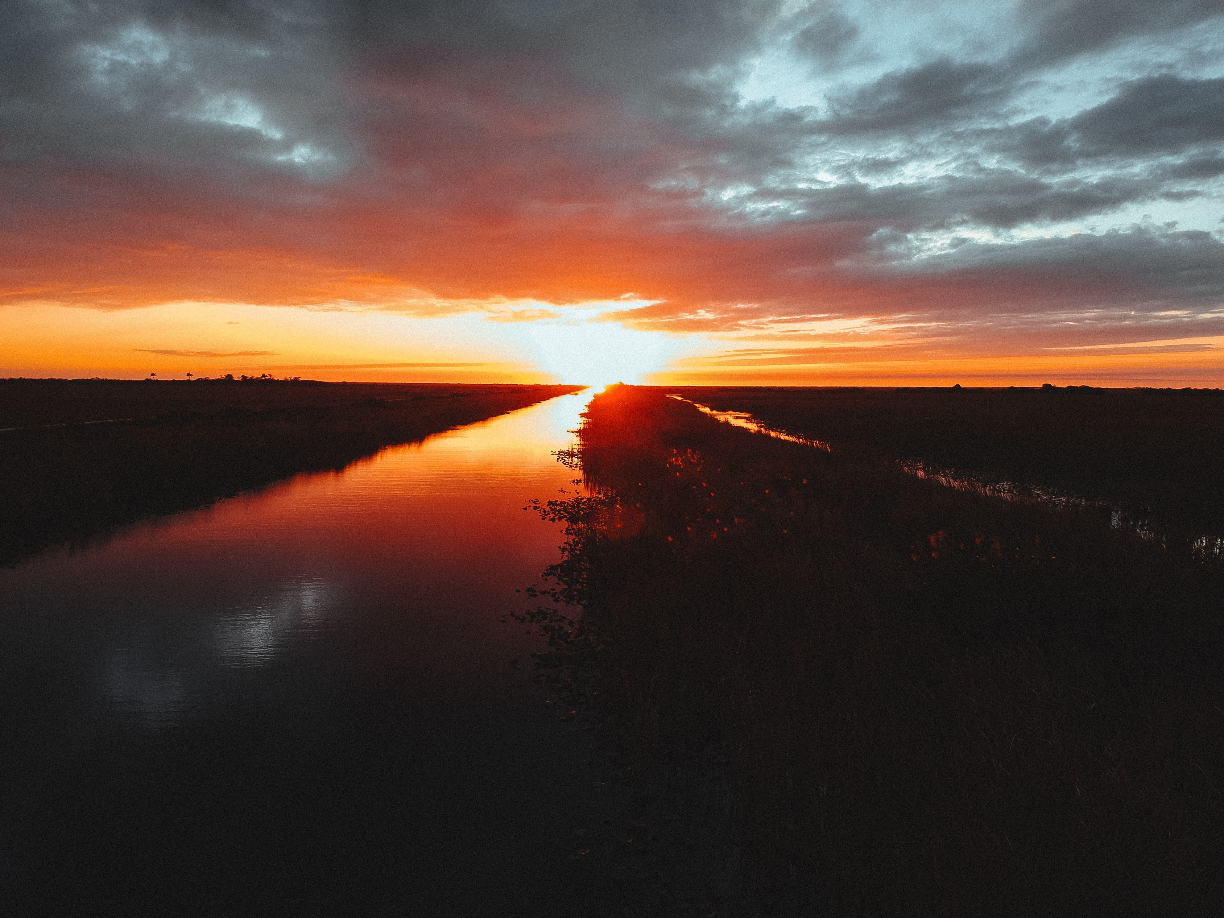 Everglades Wildlife - Sunset